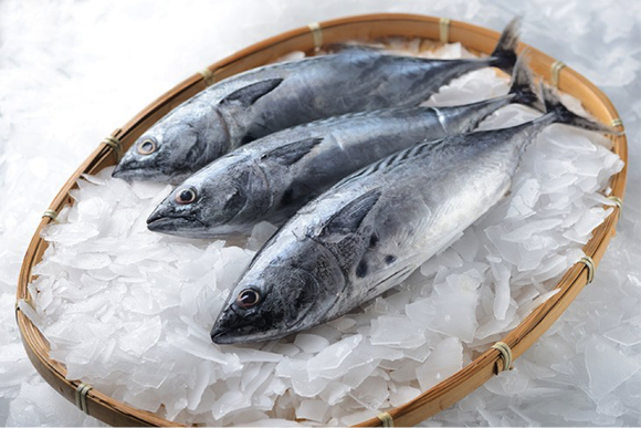 Freezing seafood can help it to last longer