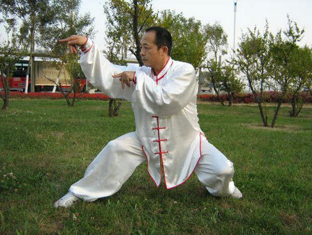 Nothern Praying Mantis Kung Fu style