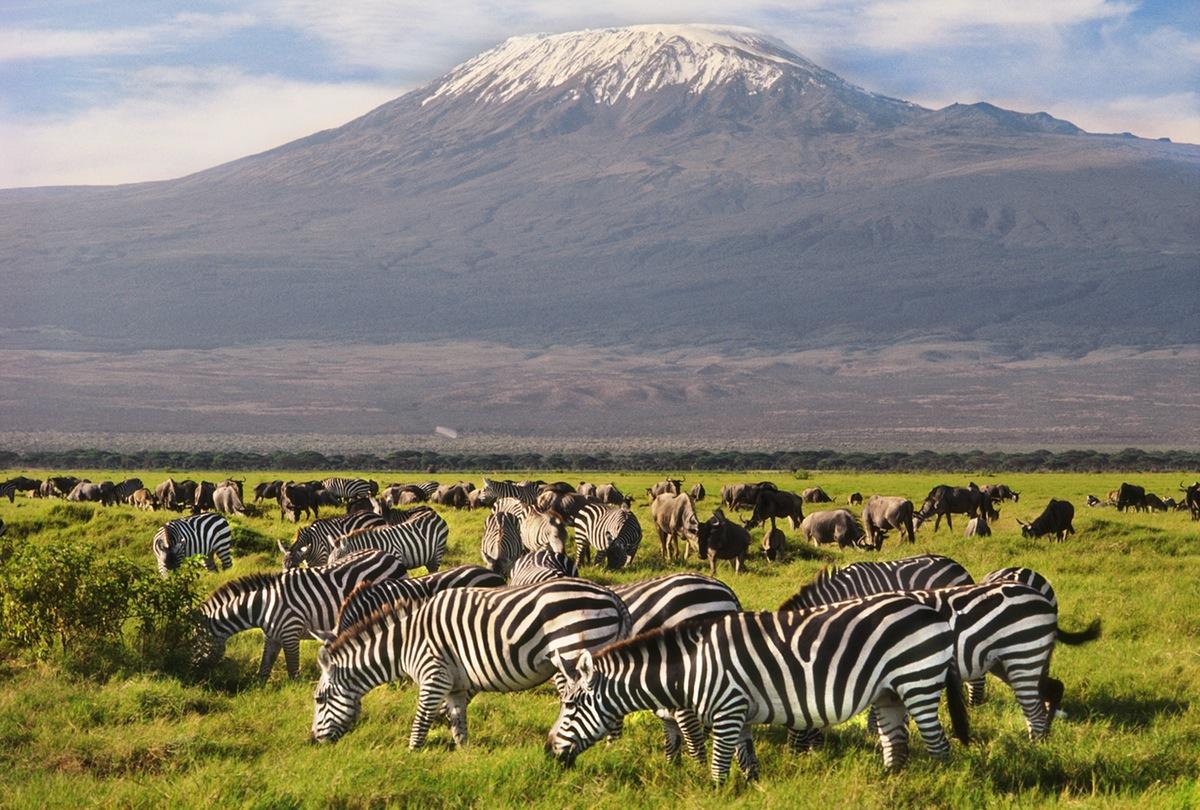 5 Must Visit African Safari National Parks