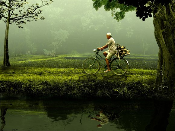 biking in nature