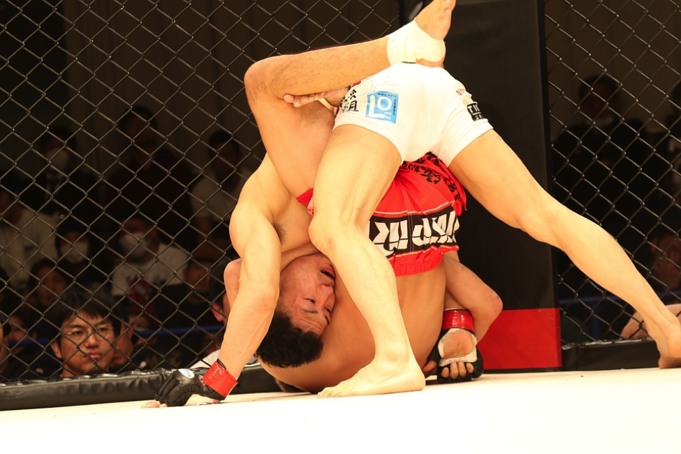 MMA combines various martial arts disciplines