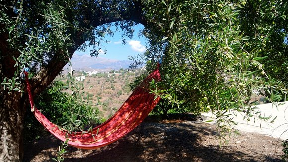 hammock on a yoga retreat